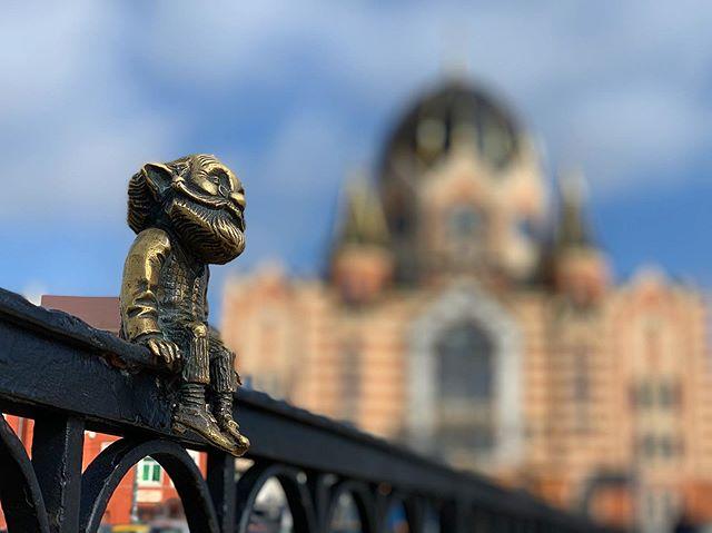 Выходные в Калининграде: что посмотреть и куда сходить